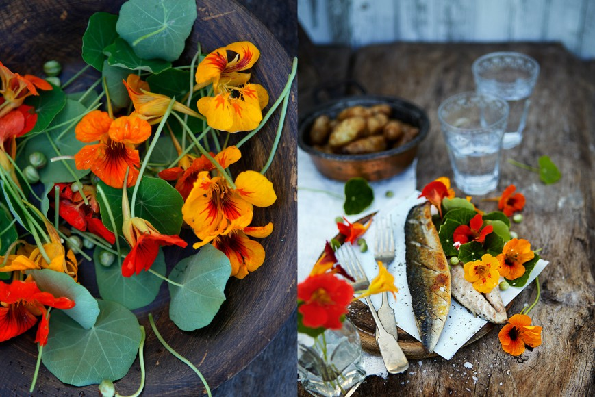 fisk_gourmet
