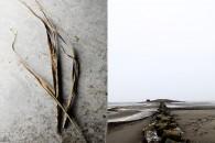 hav, strand, kust, falkenberg, bastuholmen